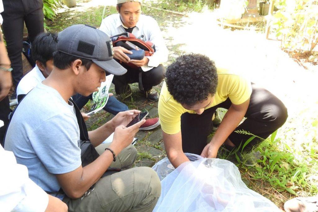 Mahasiswa menangkap kupu dengan alat khusus