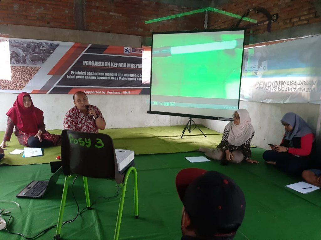 PKM UMM-Ristek Dikti Latih Karang Taruna Aquaponik dan Pakan Mandiri Berbasis Potensi Lokal 1