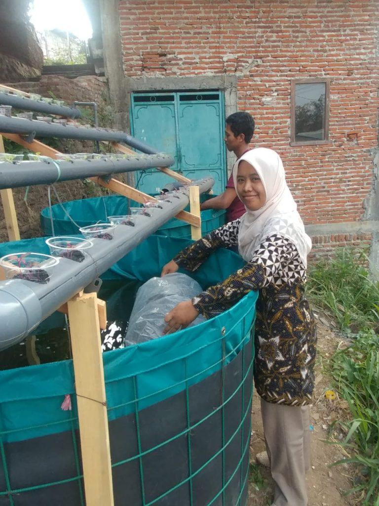 PKM UMM-Ristek Dikti Latih Karang Taruna Aquaponik dan Pakan Mandiri Berbasis Potensi Lokal 2