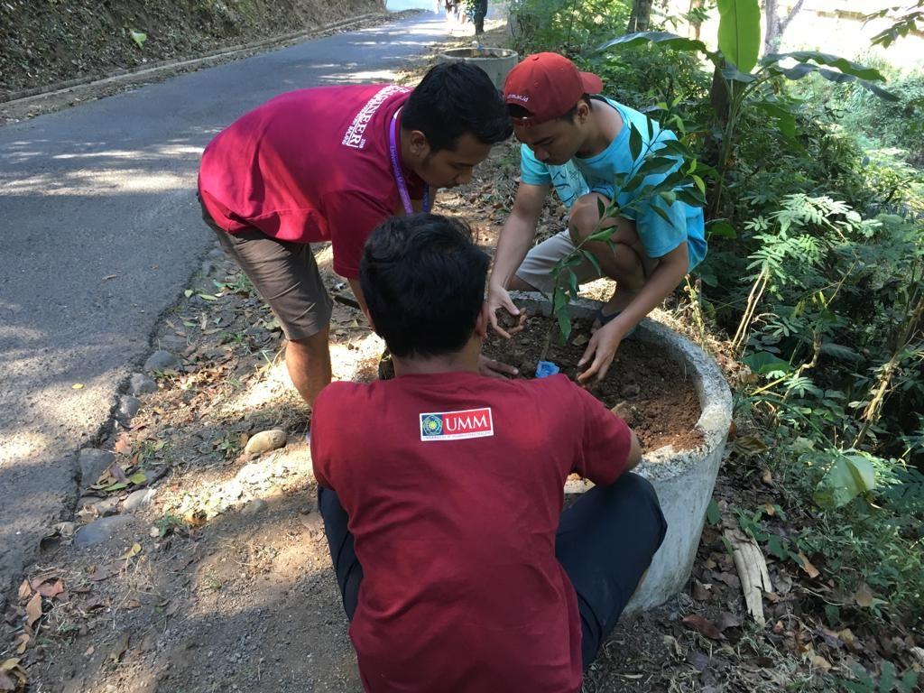 Tanam Ratusan Bibit Jeruk, KKN 102 UMM Siapkan Agenda Penghijauan 2