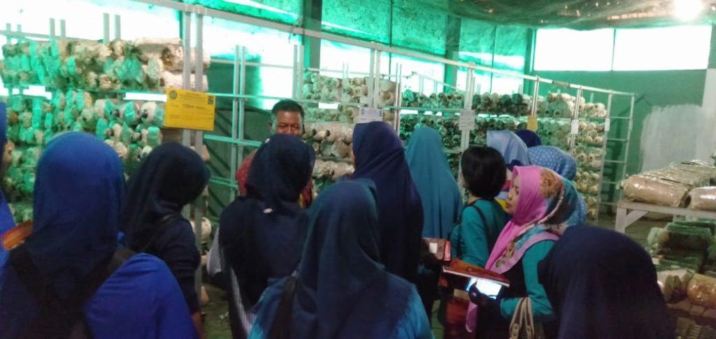 Kunjungi Edu Park FPP UMM, KWT Lesanpuro Terpikat Fasilitas Wisata Bidang Pertanian-Peternakan 2