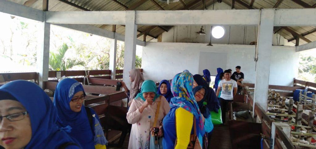 Kunjungi Edu Park FPP UMM, KWT Lesanpuro Terpikat Fasilitas Wisata Bidang Pertanian-Peternakan 4