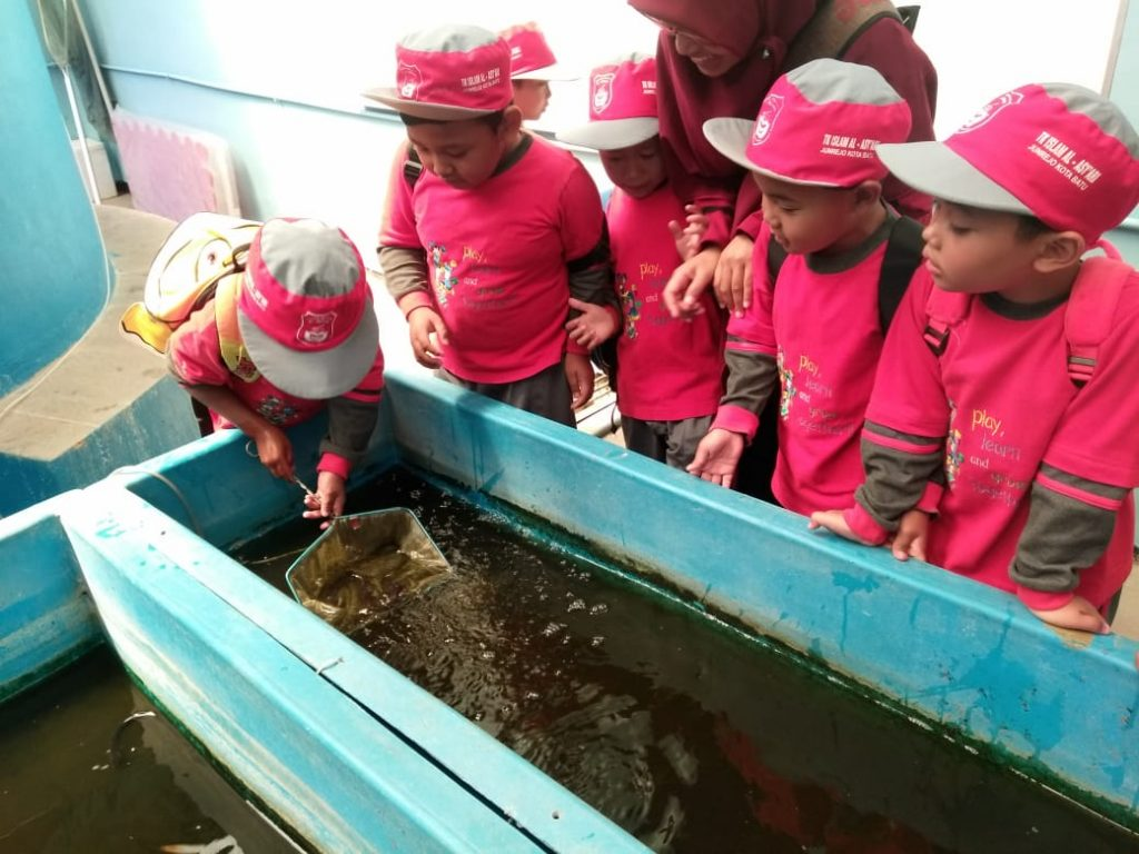 Kunjungi Fish Edu Park UMM, Puluhan Siswa TK Islam Al Asy'ari Batu Tertarik Aquaponik 1