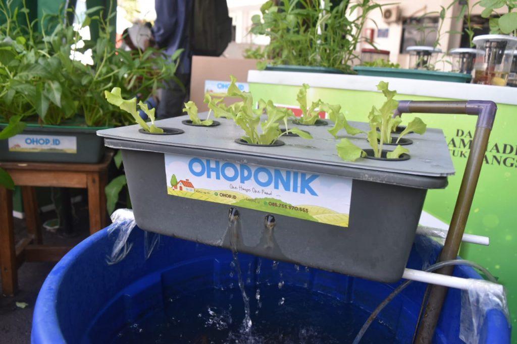 Inovasi Dosen Riza, Ohoponik Bertani Ala Warga Perkotaan 1