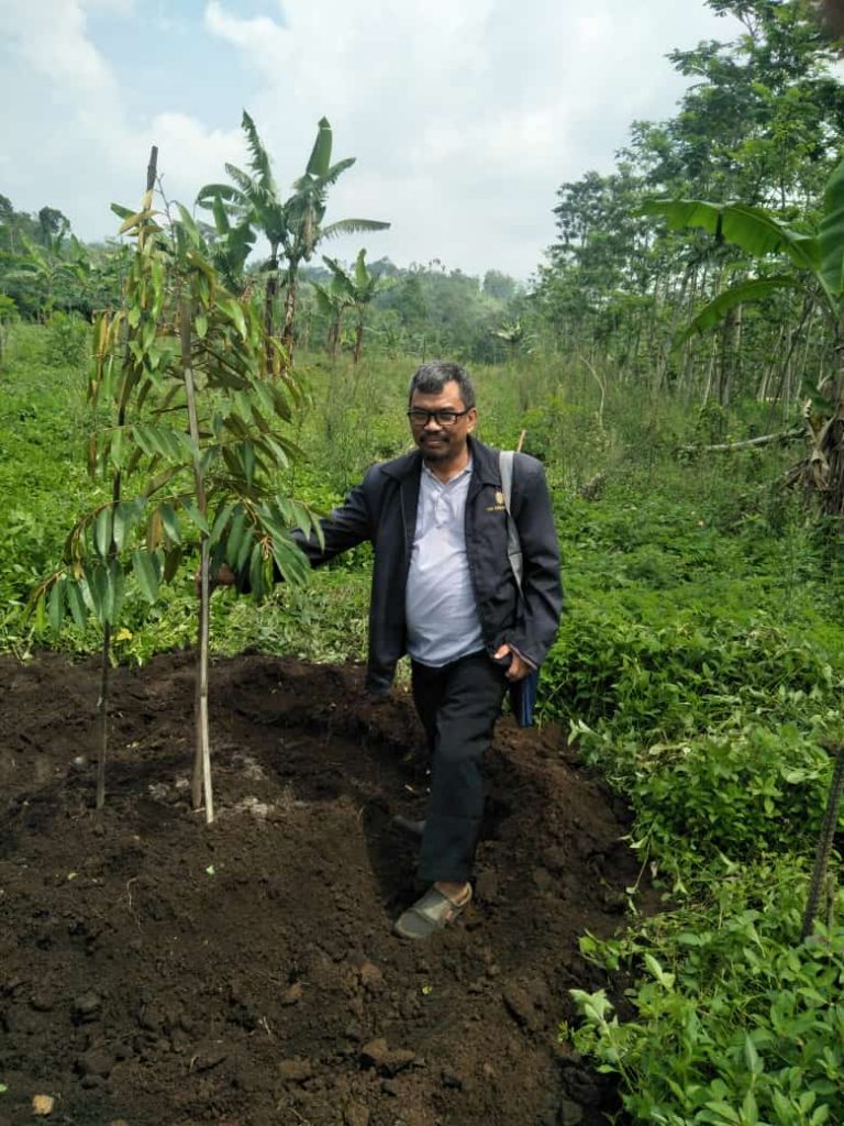 MEK PDM Kabupaten Malang-PCM Lawang, Tanam Ratusan Pohon Buah Proyeksi Wisata Petik Durian 1