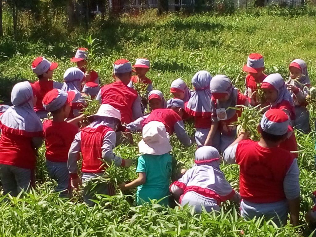Outdoor Learning ABA 2 Kota Malang, Kunjungi BPTP Karangploso Kenalkan Pertanian-Peternakan 2