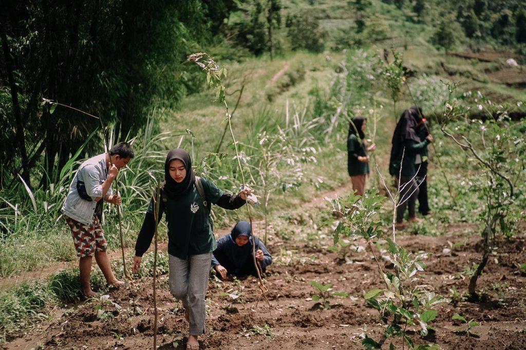 Bersama Warga KKN 24 UMM Penghijauan Kawasan Hutan Lindung 1