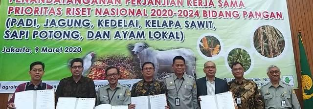 Teliti Sapi Potong, Dosen Prodi Peternakan UMM Tembus PRN 1