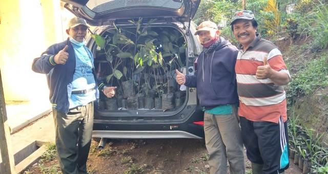 MLH PDM Kabupaten Malang Turun Gunung, Bagi Pohon PCM-PRM 1
