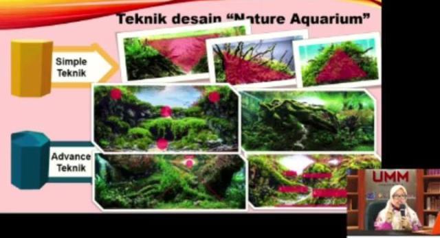 Jurusan Perikanan FPP UMM Ajak Siswa SMA-SMK Workshop Aquascape, Selain Asyik Datangkan Duit 1