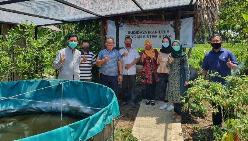 bio solar ikan aa