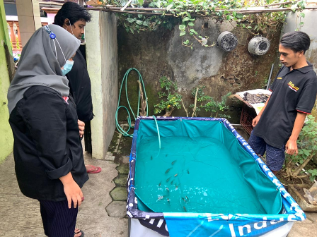 PMM Mitra Dosen Akuakultur Pelatihan Budidaya Ikan Nila Warga Jedong 2
