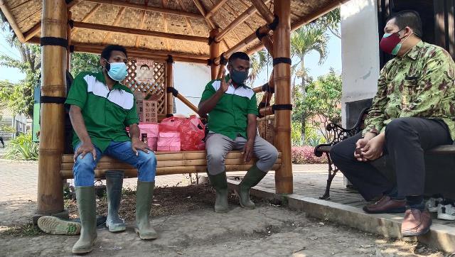 PPUPIK Domba Muda UMM Masif Produksi Pakan Komplit Implementasinya Hingga Papua 1
